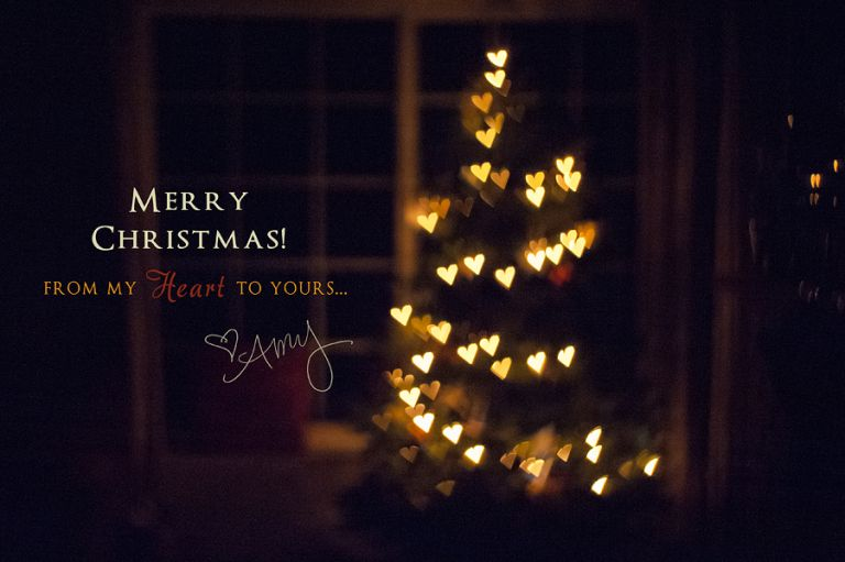 Merry Christmas from Amy Schuff Photography - Sacramento, CA