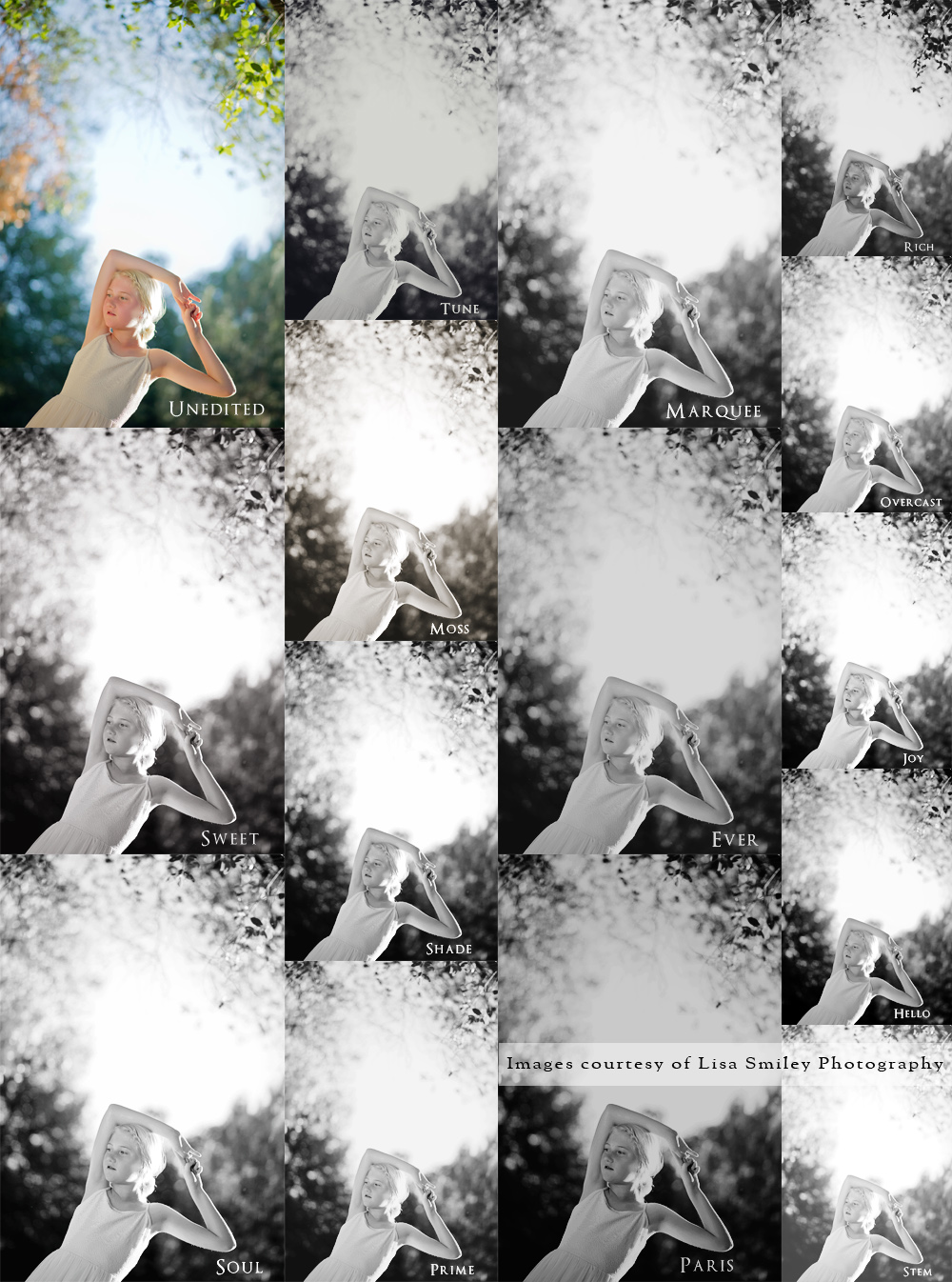 Amy Schuff Photography Black and White Actions