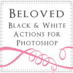 Amy Schuff Photography - Black and White Photoshop Actions