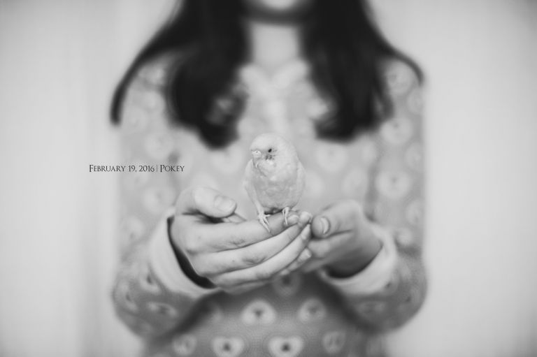Amy Schuff Photography - Black and White Images