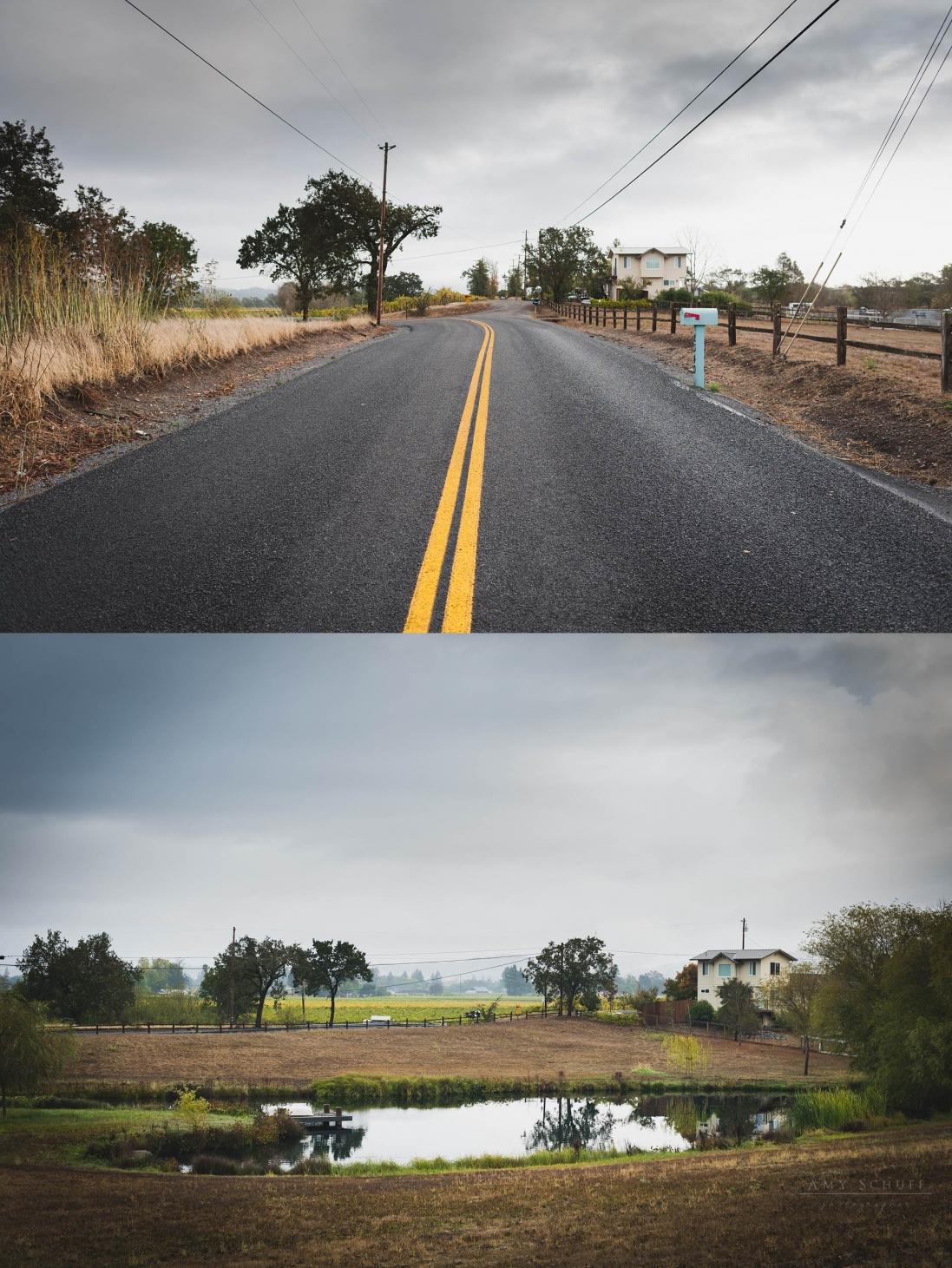 AmySchuff-SacramentoFamilyPhotographer_1101