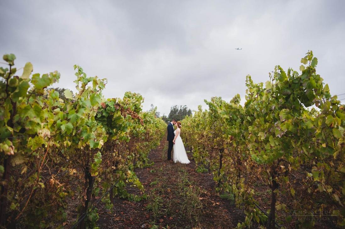 Amy Schuff - Sacramento Wedding Photographer_0087