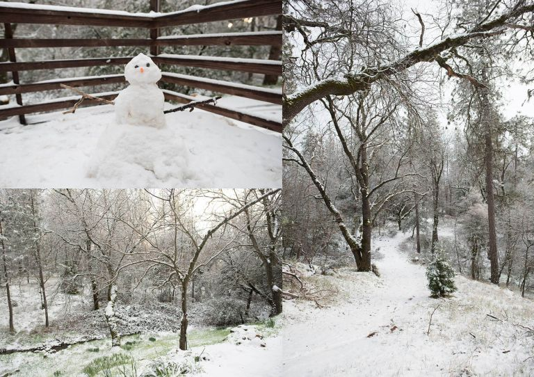 Snow by Amy Schuff