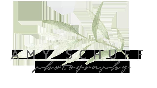 Amy Schuff Photography – Sacramento, CA Family Photographer
